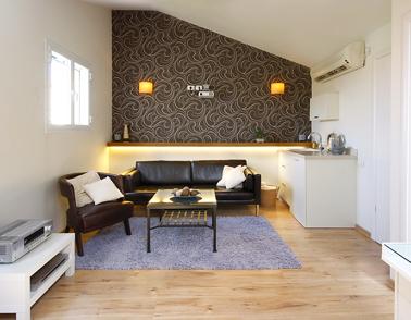 יחידת דיור בעלית גג – הסלון -